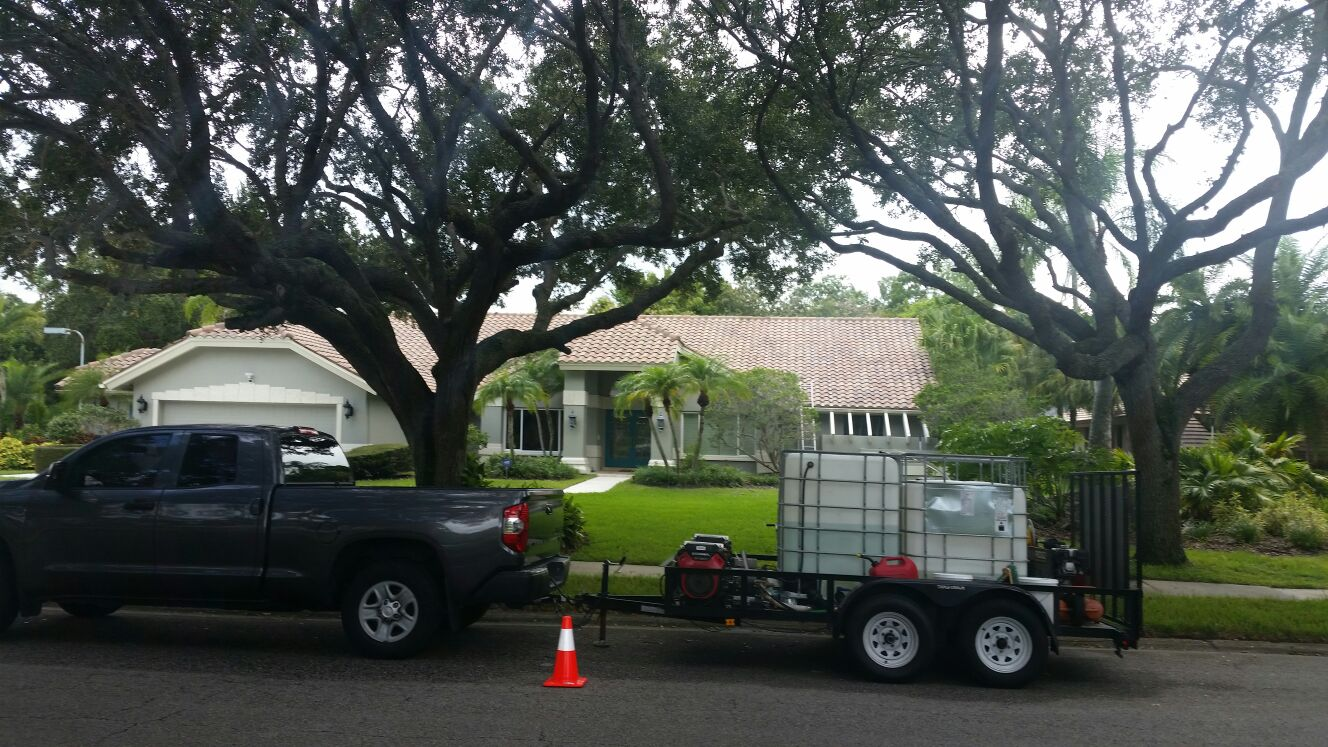 DPI Softwashed roof in Safety Harbor after
