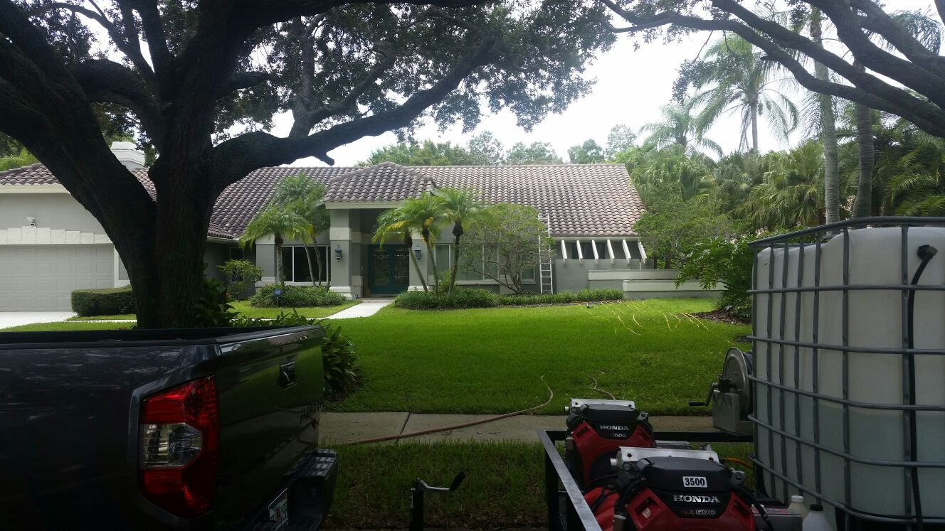 DPI Softwashed roof in Safety Harbor before