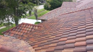 Tampa Pressure Washing Roof Cleaning - After picture