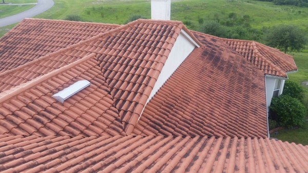 softwashing tiled roof, before picture
