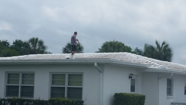 Softwashing Roofs in Mainland of Tamarac Pinellas Park