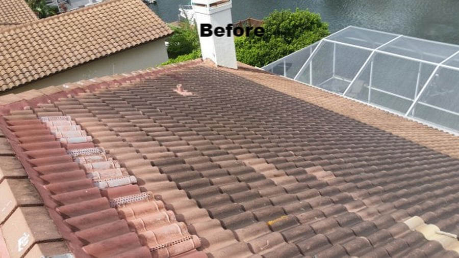 before softwashing the roofs by DPI in Tampa Bay