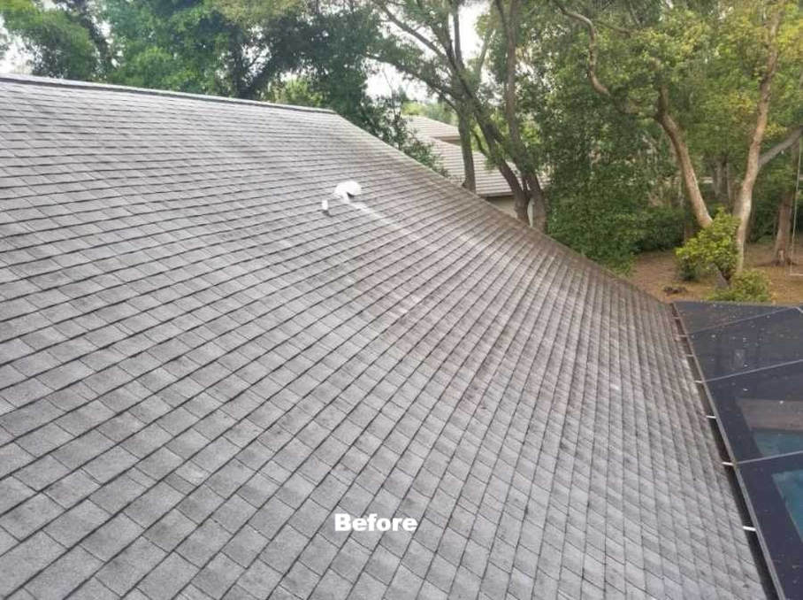 Bradenton roof cleaning by DPI