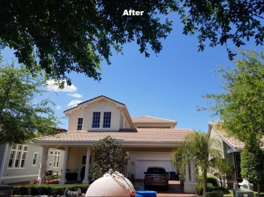 Softwashing tampa bay roofs