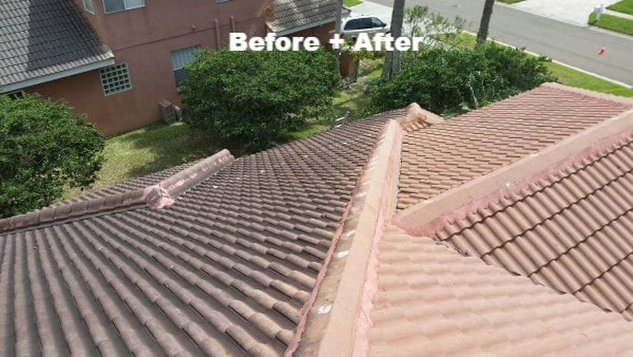 roofs before and after softwashing by DPI