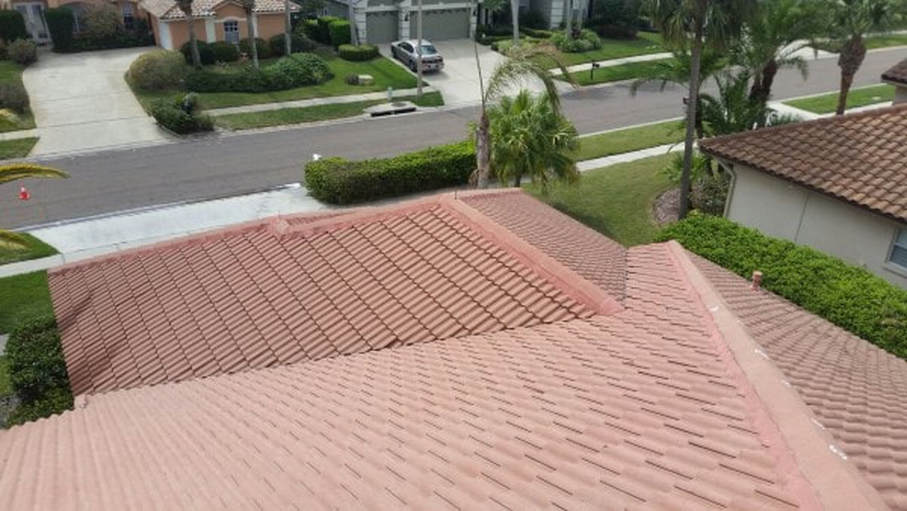 softwashing Tony's roof in Tampa