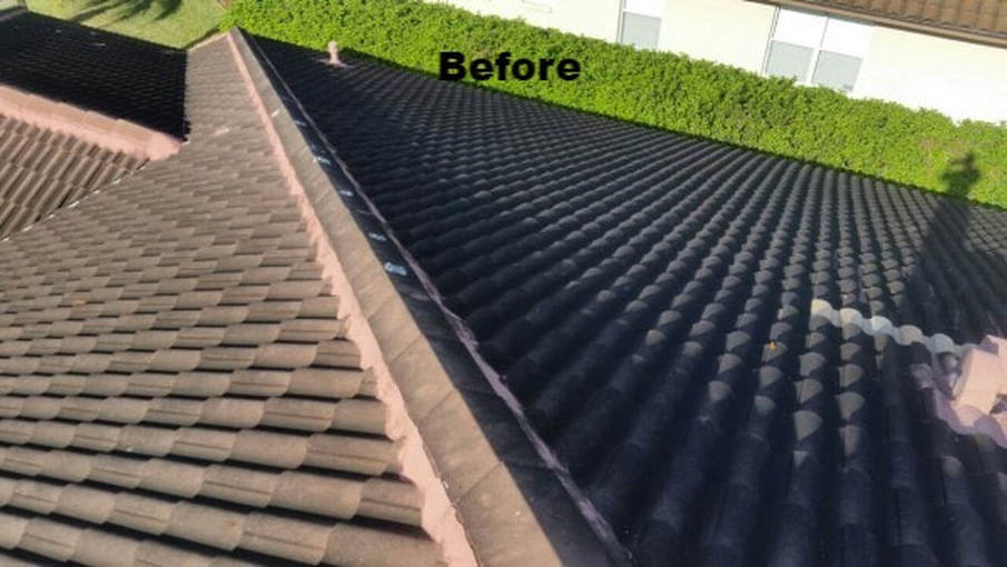 Tony's roof before softwashing by DPI in Tampa Bay